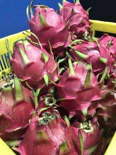 Dragon Fruit per kilo