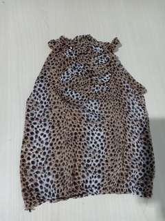 Leopard u can c