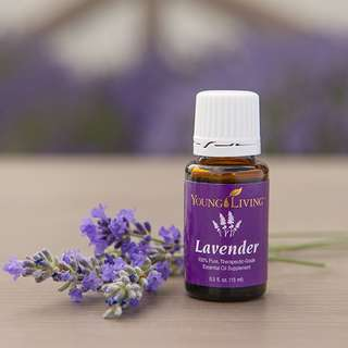Young Living lavender