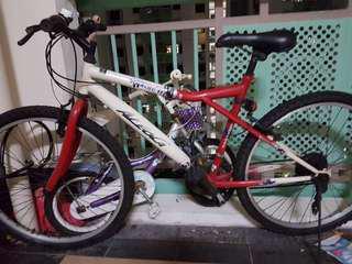 Red & White Bike