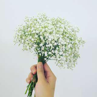 滿天星-伴娘花球