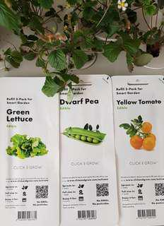 Click & Grow Refill 3 Packet