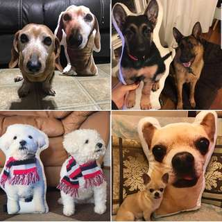 CUSTOM PET PILLOW - based on your pet photo
