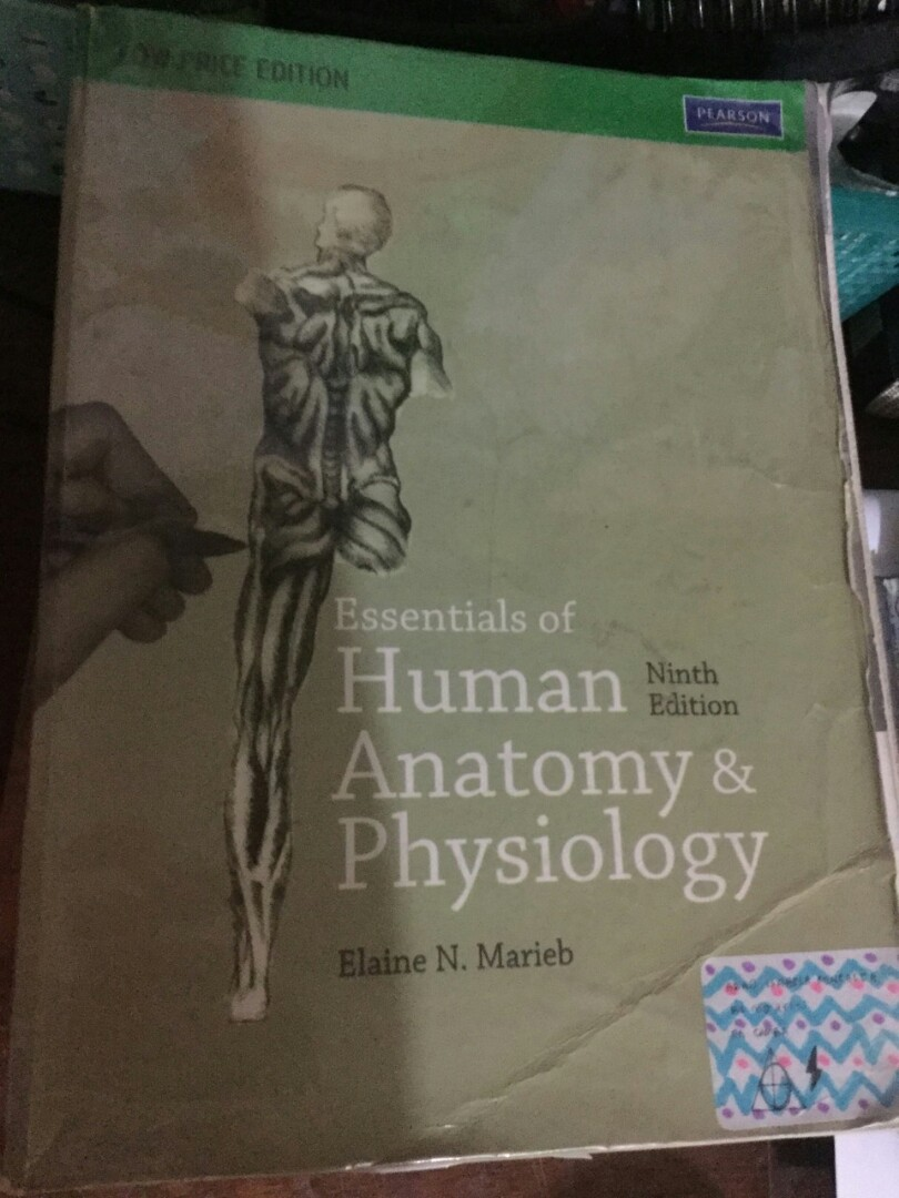 Essentials of Human anatomy and Physiology 9th edition by Elaine ...