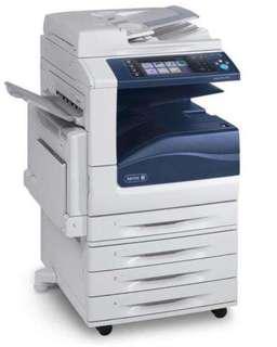 Fuji Xerox Printer for Rent/sale/Lease