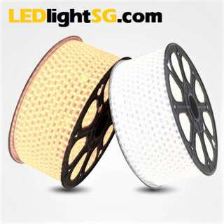LED Strip Light Rope Waterproof IP67 outdoor indoor 220V White / Warm white