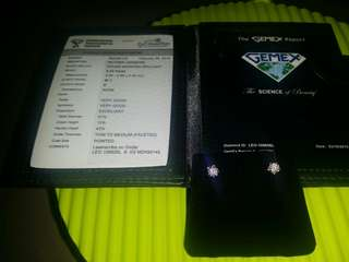 Ma Belle 原價$16810 The Leo Diamond 18K/750 白色黃金 鑽石鑲嵌耳環 金重 2.10克 2粒 LEO 圓形鑽石總重量0.46卡 色澤E 淨度SI 1有証書