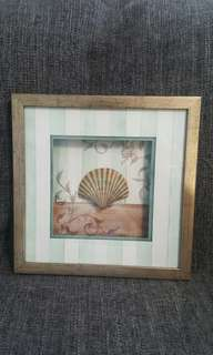 Framed shell wall hanging