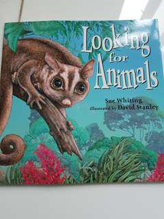 Looking for Animals Lift the Flap book