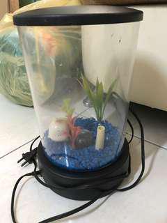 🚚 塑膠小魚缸