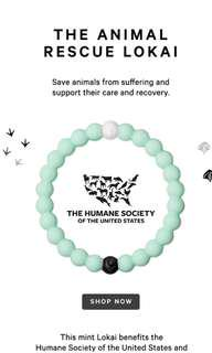 🚚 BNWT Animal Rescue Lokai