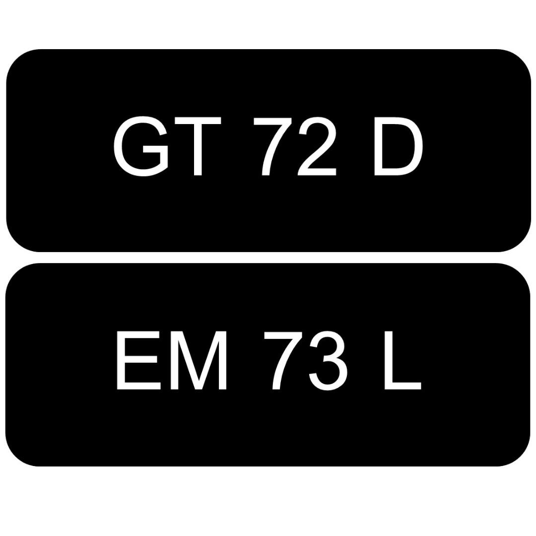 A Pair of Vintage Vehicle Number Plate for Sale: GT 72 D, EM 73 L ...