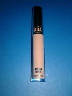 AOA Wonder Matte Liquid Lipstick Fleek LAST PRICE