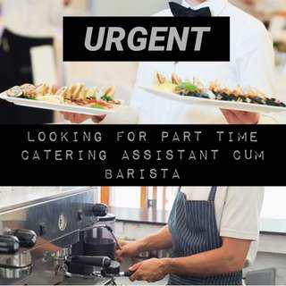 Part Time Catering Assistant/Barista