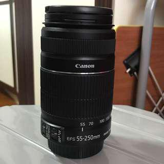 Canon EFS55-250mm