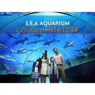 Sea Aquarium Sea Aquarium Sea Aquarium Sea Aquarium Sea Aquarium Sea Aquarium Sea Aquarium Sea Aquarium Sea Aquarium sea aquarium sea aquarium SEA Aquarium Sea Aquarium Sea Aquarium