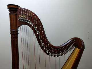 二手豎琴 Salvi Ana Harp