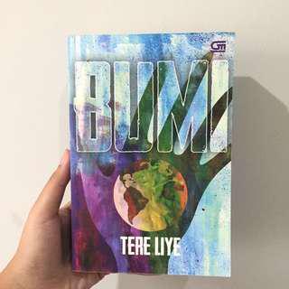 Novel Bumi