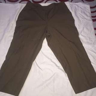 MAGGIE MCNAUGHTON brown plus size slacks blazer pants xl
