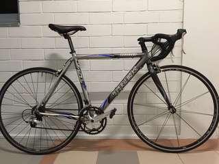 Trek 1000 SL road bicycle / bike (54cm)