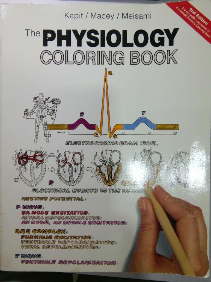 The Physiology Coloring Book Buku Di Carousell