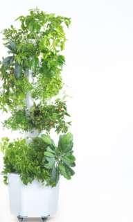 Aerospring Garden standard for 27 plants
