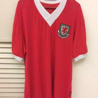 Football jersey Wales 2006