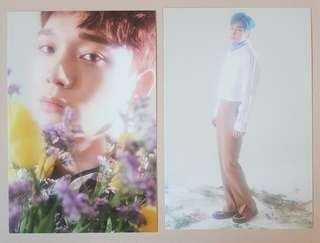 EXO CBX Blooming Days Pre-Order Postcards