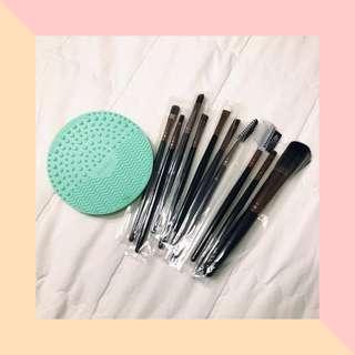 Makeup Brushes (10 Pcs.) + Cleansing Pad Set