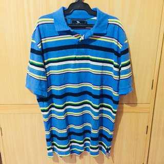Blue stripes polo