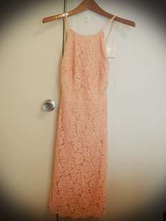tigermist lace dress