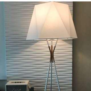 Designer Modern Nordic Table / Floor Lamp