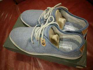 BNIB authentic Timberland casual shoes