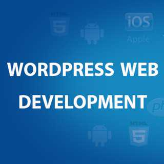 Wordpress Web Design - No Deposit - Pay Later