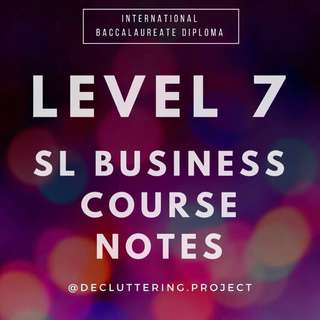 ✔️LEVEL 7✔️ IB SL Business notes - achieved level 7