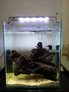 BIG SALE! Cheap Glass Tank for Sale!!