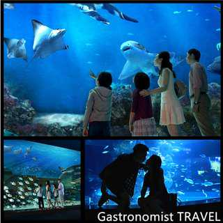 🚚 SEA aquarium + Maritime Experiential Museum tickets