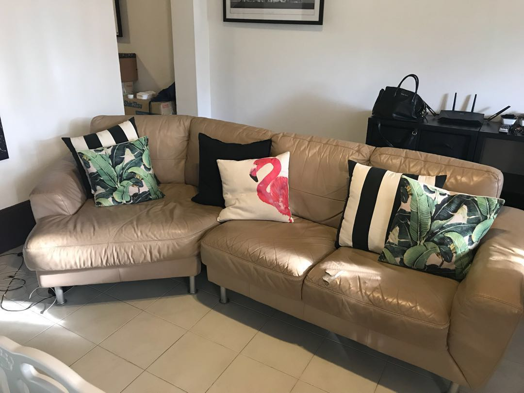 Free Leather Sofa With Chaise