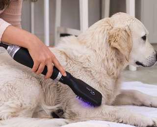 Dog Grooming Dryer Brush with changeable heads