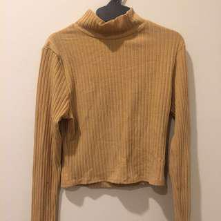 Crop Turtle Neck Sweater