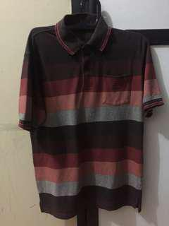 Polo Shirt Stripped
