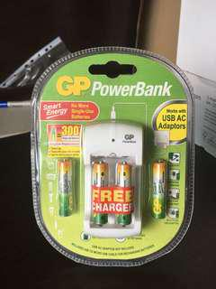 Reusable AAA batteries with charger