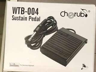 Keyboard Foot pedal dual polarity