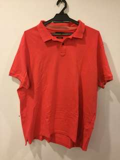 Massimo Dutti Polo Shirt. (AUTHENTIC)