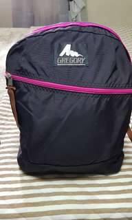 Gregory almost new bagpack