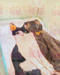 訂造繪畫寵物或人物 冷氣被 + 附上原畫  #訂製 #自家製 #手繪 #畫 #冷氣被 #寵物 #貓 #狗 #兒童