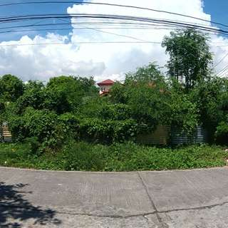 Lot For Sale Remmanville Paranaque