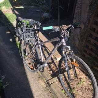 Reid city bike