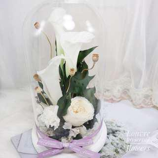 Preserved Flowers - Glass Dome