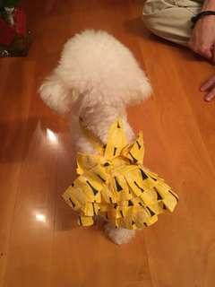 狗狗幼犬蓬蓬吊带裙dog yellow dress skirt